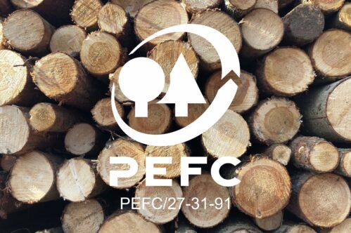 Foto In Logo